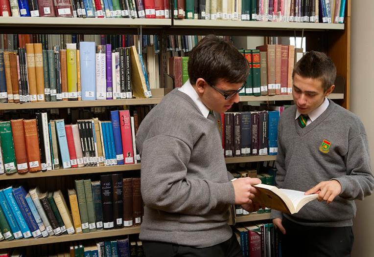 colegios públicos y privados en Irlanda