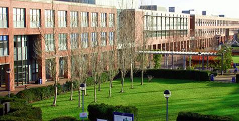 Curso de inglés en la Universidad de Dublín